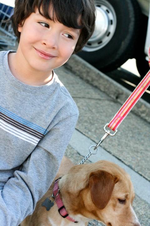 pippa-wait-dog-shopping