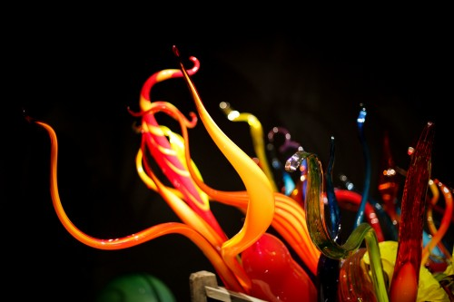 chihuly love-14