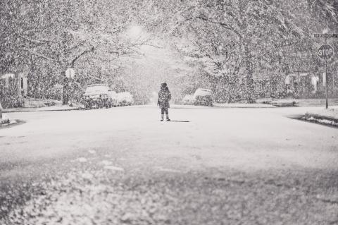snow love lyra